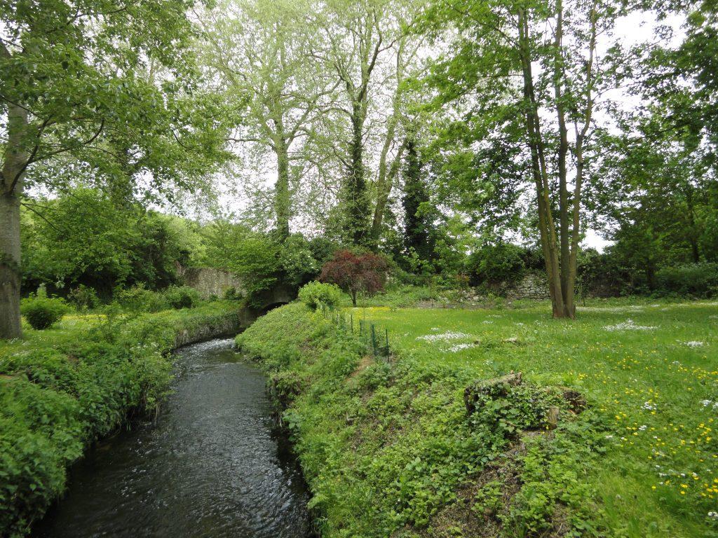 Le ru de Gally au jardin Rennemoulin